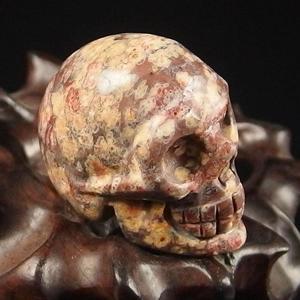 Leopard Skin Jasper Crystal Skull