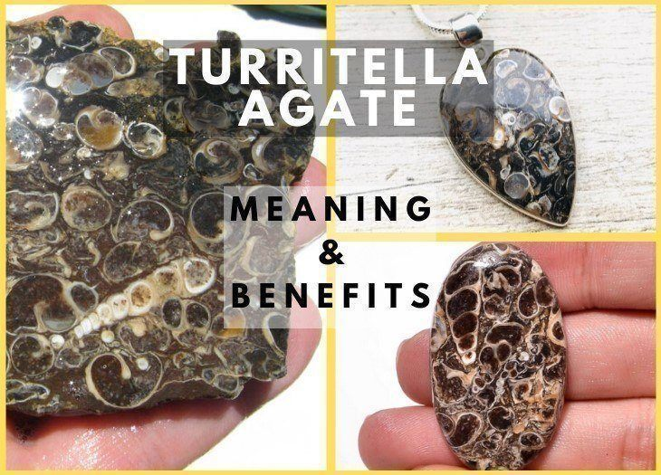 turritella agate meaning and benefits